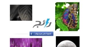 بالفيديو: طيور دبي بعدسة حمدان بن محمد