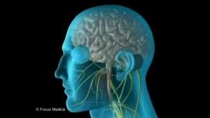 التهاب العصب السابع  هو الاكثر شيوعا في فصل الشتاء
