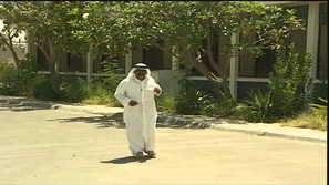 قصة الغراب الذي يهاجم أحد المواطنين في دبي