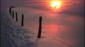 بعض من أجمل الصور الملتقطة في فصل الشتاء