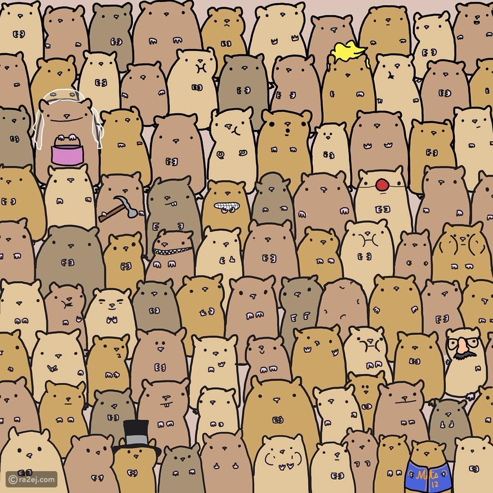 اختبار: هل يمكنك العثور على جوال البطاطا وسط حيوانات الهامستر الموجودة في هذه الصورة؟