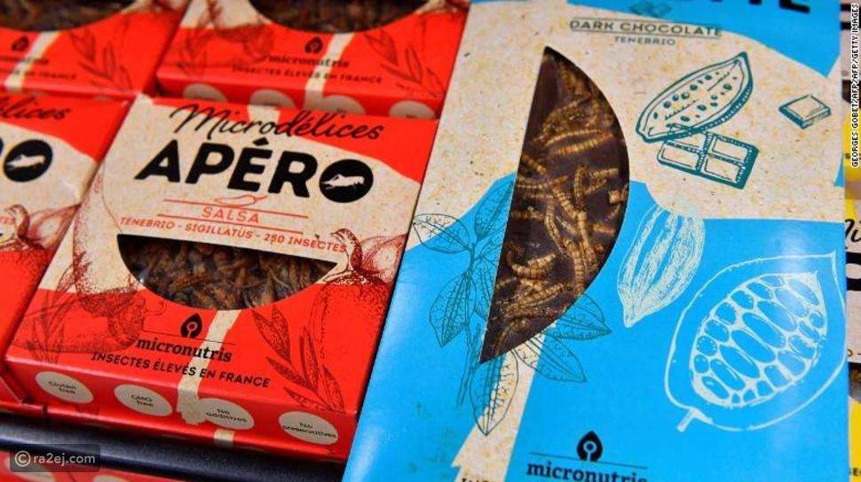 أطعمة فاخرة مصنعة من الحشرات! بالصور