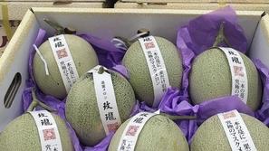 حدث في اليابان: بيع زوج من البطيخ الأصفر بـ1114 دولاراً