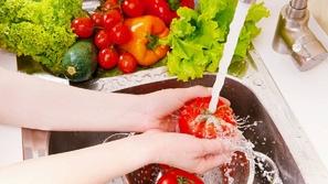 صور: أشهر أنواع الجراثيم والبكتيريا المنتشرة في الطعام