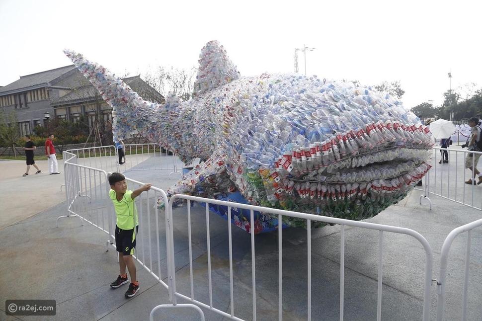 شاهد حوت كبير من البلاستيك!