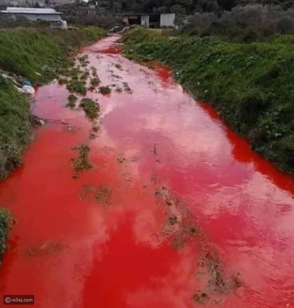 تغيير لون نهر في فلسطين للون الأحمر: ما القصة؟