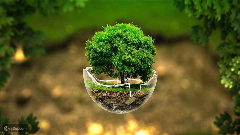 اليوم العالمي للأرض: هكذا أنقذ فيروس كورونا الكوكب من التلوث البيئي