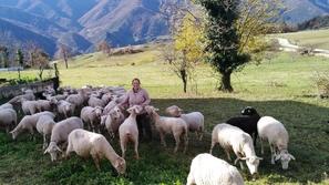 مدرسة إسبانية تنادي بالعودة إلى الريف وتعلمك كيف تكون راعي ماشية