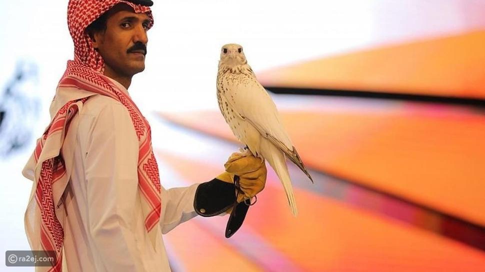 بيع أغلى صقر في العالم بالسعودية: هذا سعره وصفاته الفريدة
