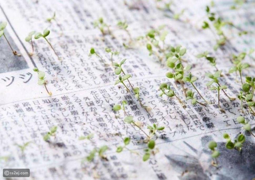 صحيفة يابانية حبر ورقها كسماد مقوى للإنبات، شاهدوا الصور المبهرة!