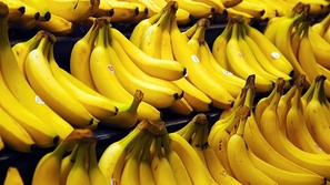 استمتع بمذاق الموز قبل انقراضه.. العلماء يحذرون من اختفاء هذه الفاكهة لسبب مرعب