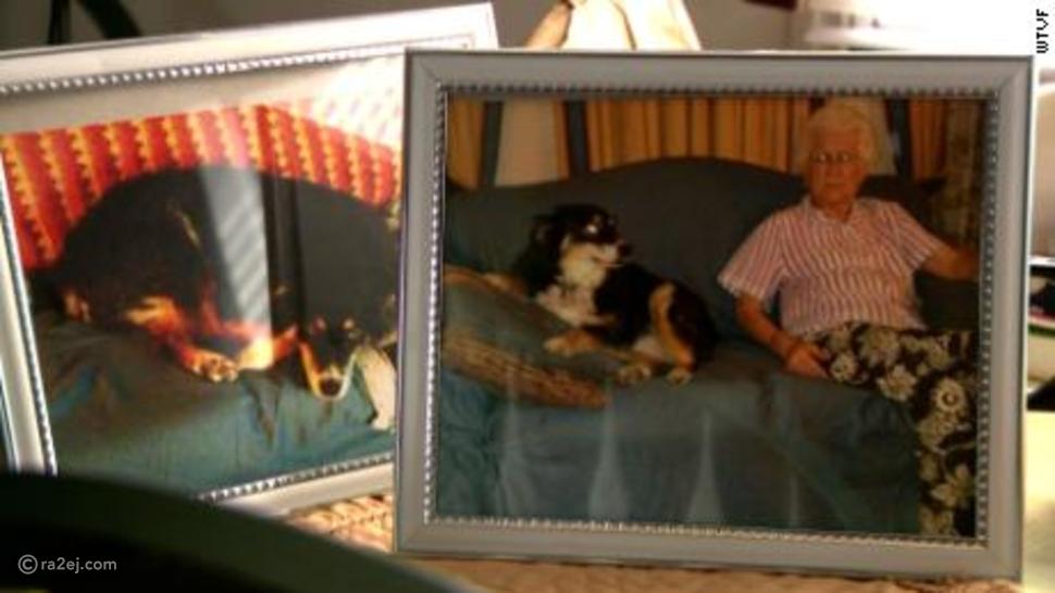 كلب لرجل أعمال راحل يرث 5 ملايين دولار