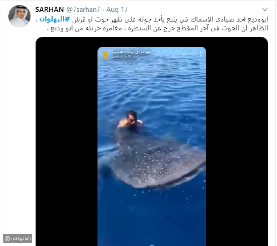 فيديو مغامرة جريئة لشاب سعودي قفز على ظهر ثاني أكبر سمكة في العالم