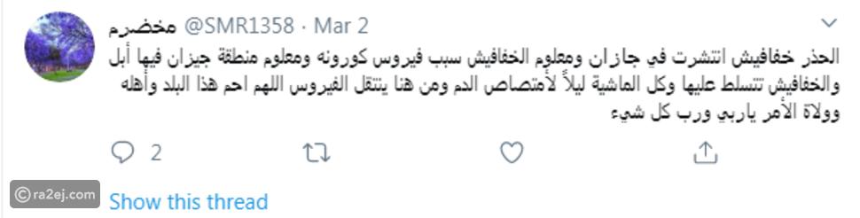 لغز الخفافيش المرعبة في السعودية: وتدّخل حكومي عاجل