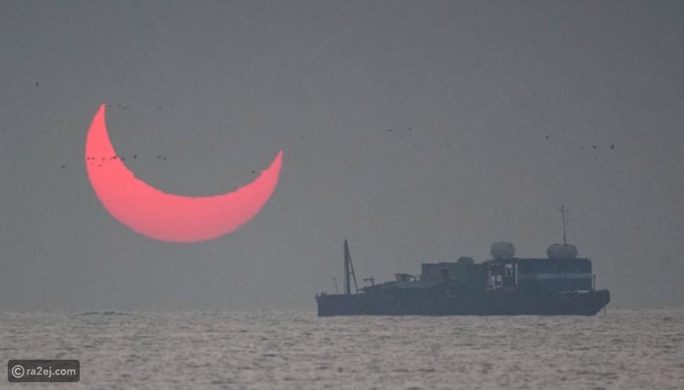 فيديو وصور: قرون الشيطان تظهر في الخليج فما سر ظهورها؟