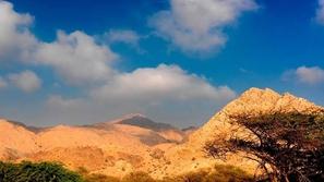 فيديو سعودي يبتكر سيارة تسير على قمم الجبال: تصميمها غريب